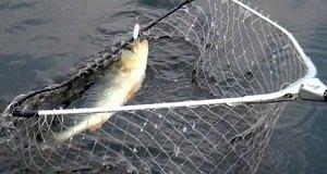 Подсак для рыбалки