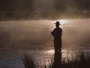 Ловля леща на Рейне