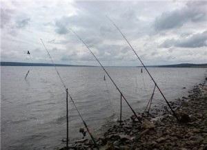 Ловля на фидер весной по холодной воде