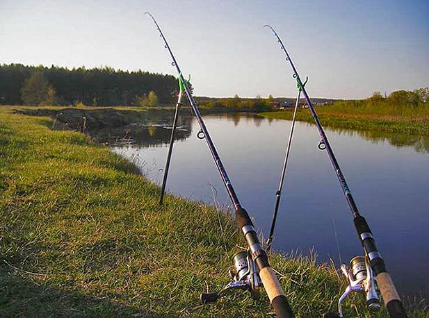 как правильно ловить на фидер на реке с берега видео