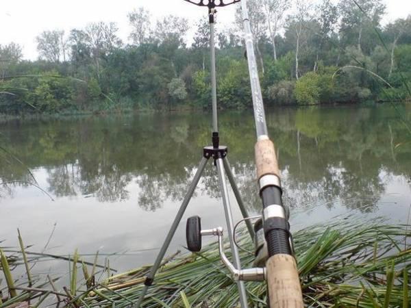 Выбираем прикормку для ловли фидером на реке